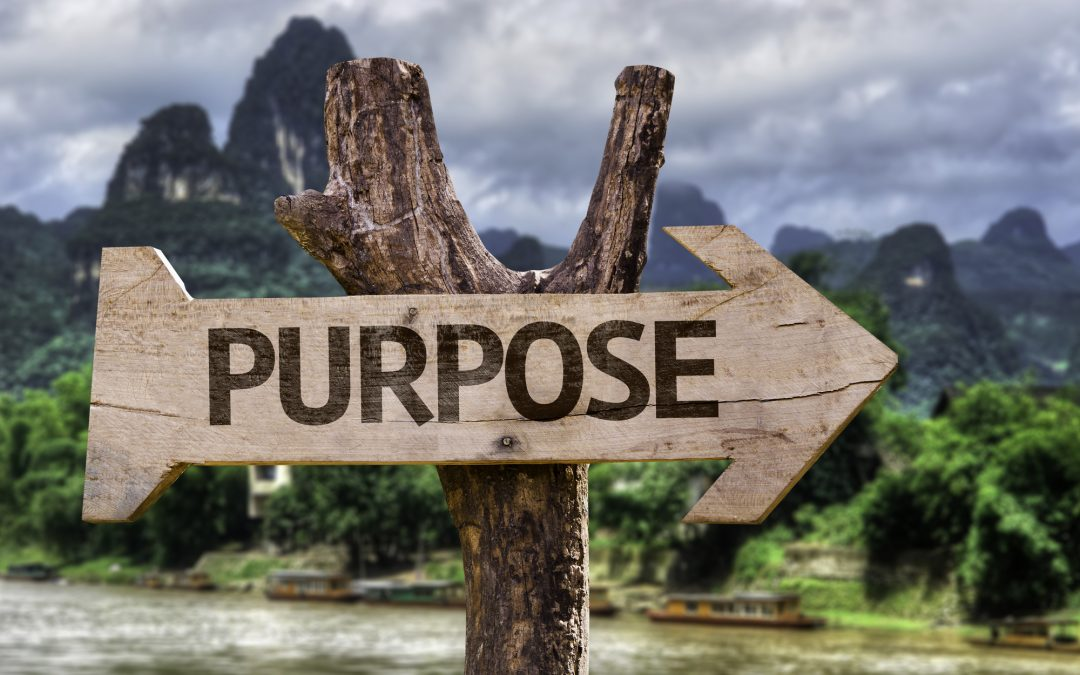 This Month's Ramble: The Purpose of Purpose